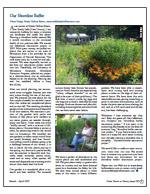 Our Shoreline  Restoration Project PDF - Page 3